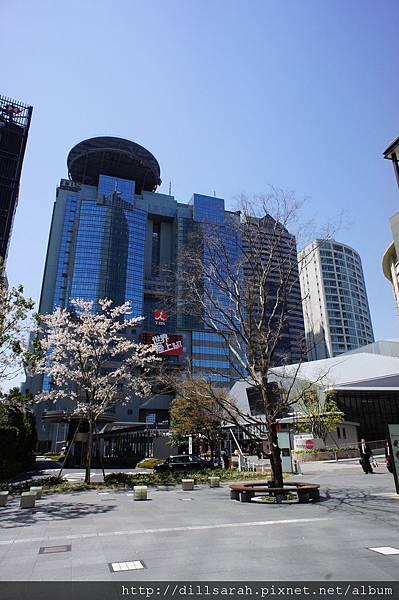 2011 TO  TOKYO 492.jpg