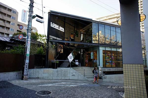2011 TO  TOKYO 804.jpg