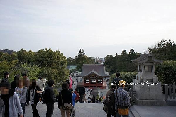 2011 TO  TOKYO 401.jpg