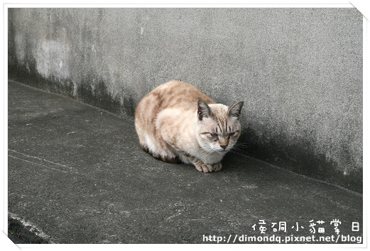 IMG_0816.jpg
