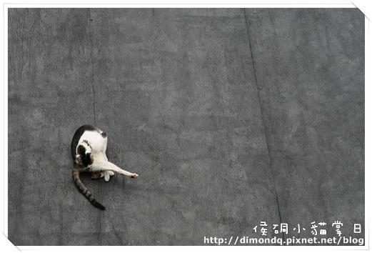 在屋頂上做瑜珈