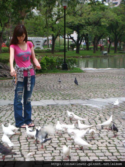 看我多受到鴿鴿的歡迎阿哈哈.jpg