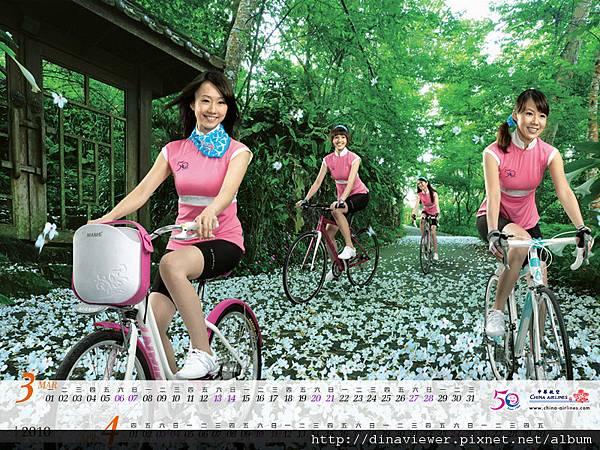 2010image02.jpg