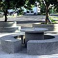 樹穴座椅1.JPG