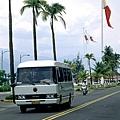 棕櫚與旗3.JPG