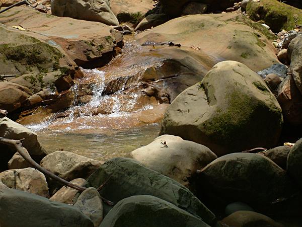 天然瀑026.JPG