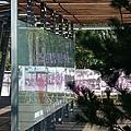 西坪綠廊053.JPG