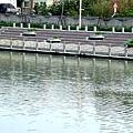 福鹿河濱公園007.JPG