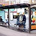 等公車的小亭.JPG