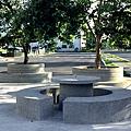 樹穴座椅2.JPG