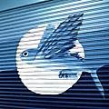 飛魚的店011.jpg
