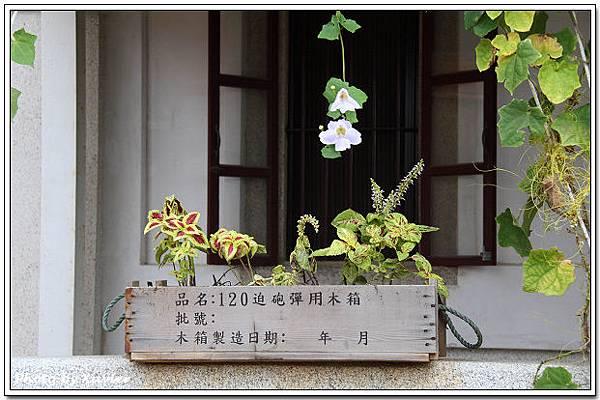 IMG_9725-1.jpg