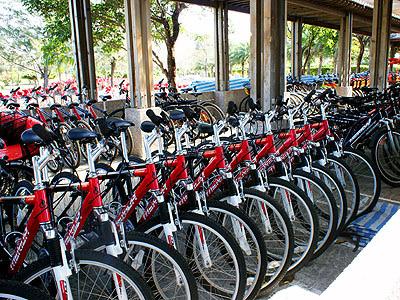 台東森林公園-腳踏車租借.jpg