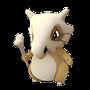 APP, Pokémon GO, 寶可夢圖片, #104卡拉卡拉/Cubone