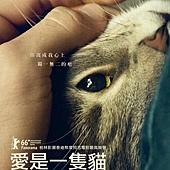 Movie, Kater(奧地利) / 愛是一隻貓(台) / Tomcat(英文) / 公猫(網), 電影海報, 台灣