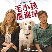Movie, Who Gets the Dog?(美國) / 毛小孩選邊站(台) / 狗狗监护权(網), 電影海報, 台灣