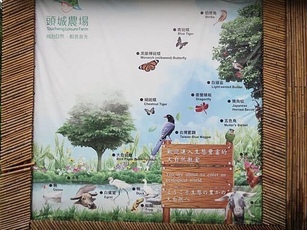 頭城農場, 農場環境, 導覽圖