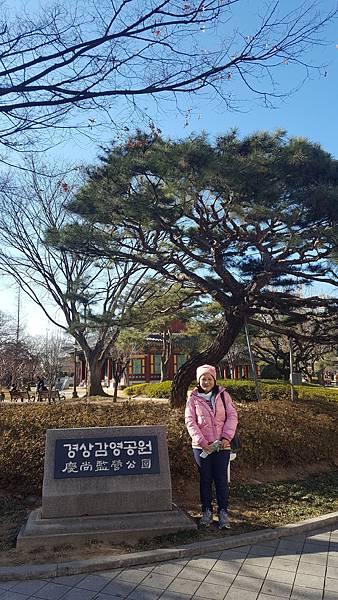 Day5-118 慶尚監營公園.jpg