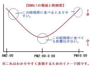 bmal-1-thumbnail2