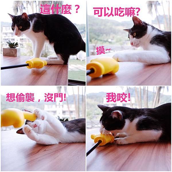 page_副本.jpg