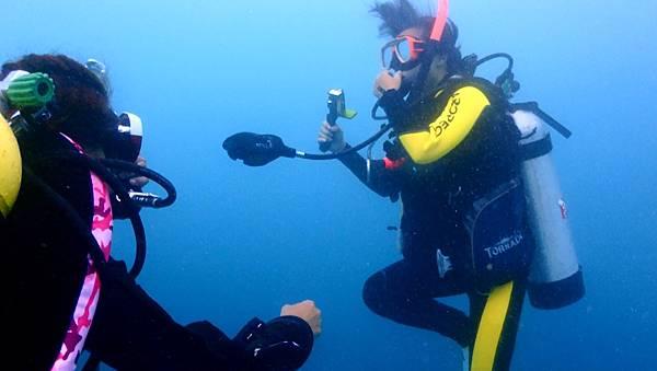 水下2.jpg