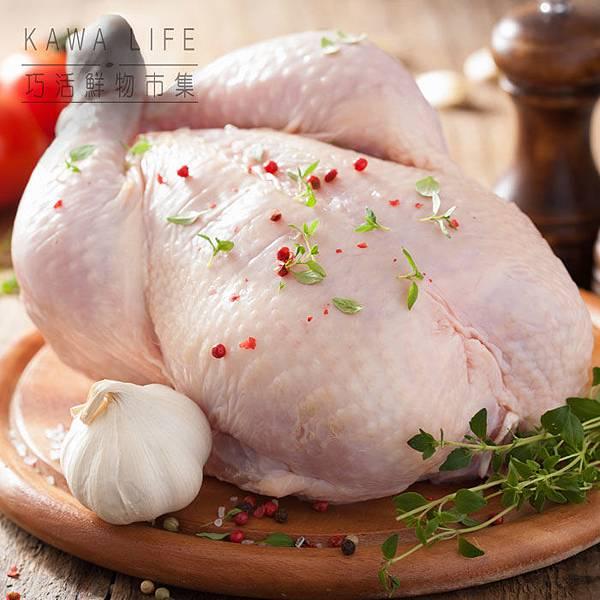 黑鑽雞 全雞