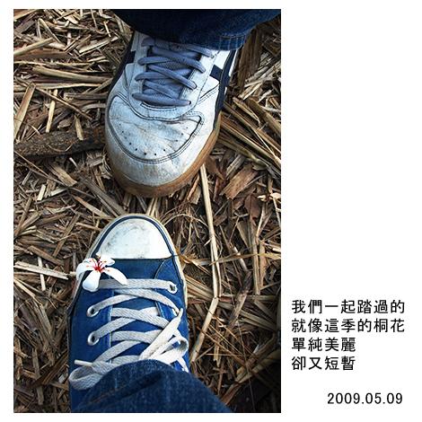 鞋子上的小花.jpg