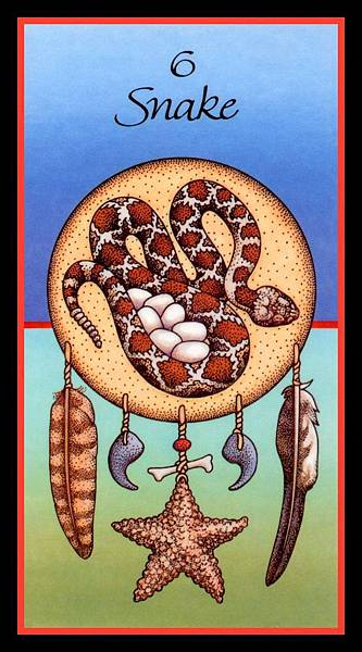 9 snake-card-pic.jpg