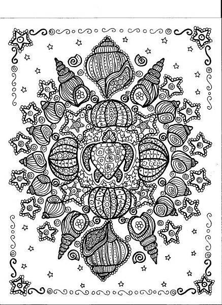 mandala shell 貝殼