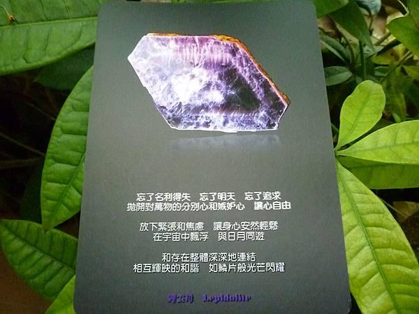 鋰雲母 Lepidolite