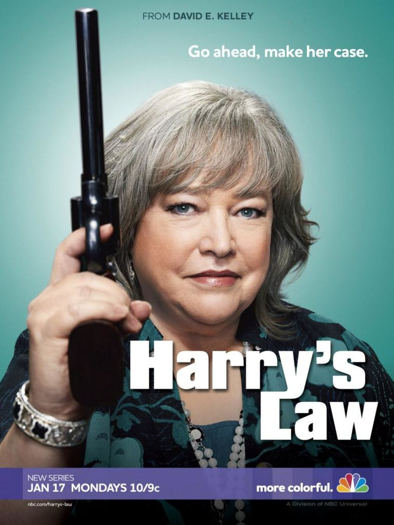 Harry_s_Law_TV_Series-974241763-large