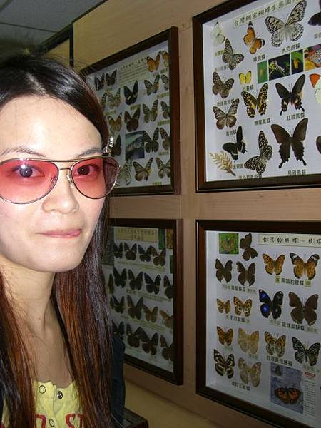 耶! 有美麗的蝴蝶