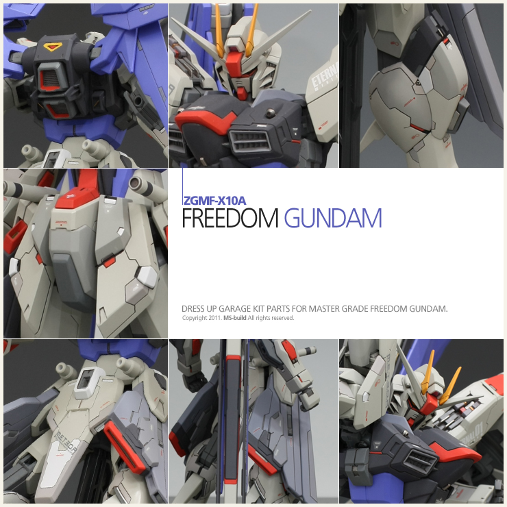 contents-point_freedom