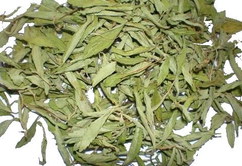 stevia003.jpg