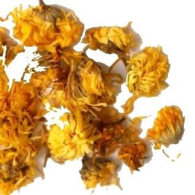 marigold007.jpg