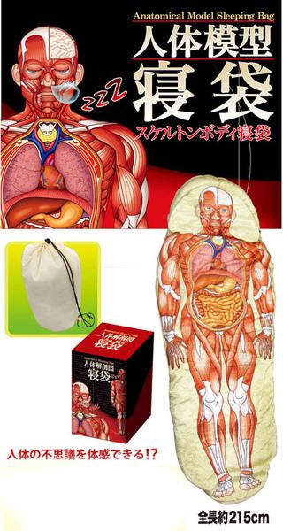 Saco-de-dormir-anatomico-bem-legaus-2.jpg