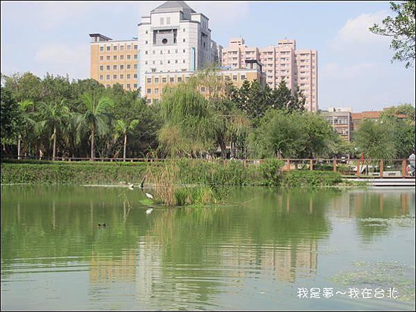 台北37.jpg