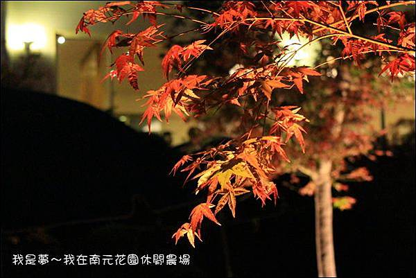 南元休閒農場73.jpg
