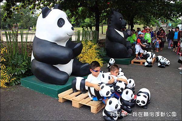 屏東麟洛運動公園貓熊12.jpg