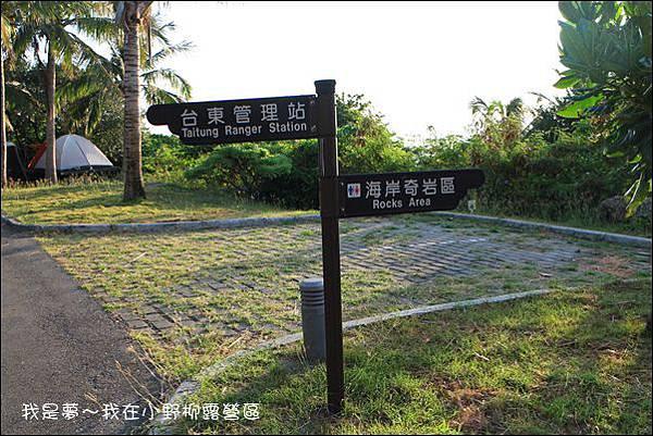 台東露營28.jpg