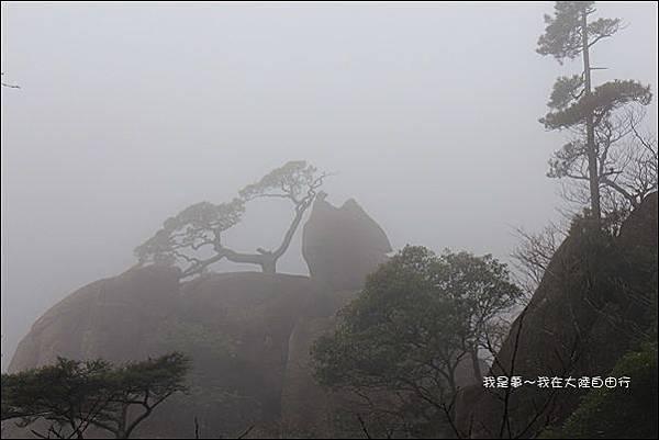 上海蘇杭黃山九天55.jpg