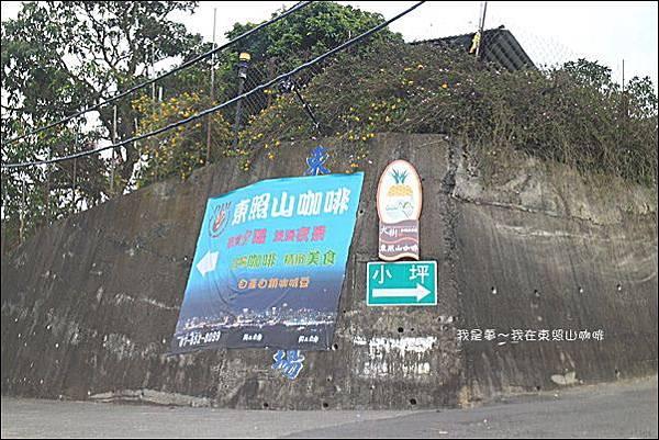 東照山咖啡08.jpg