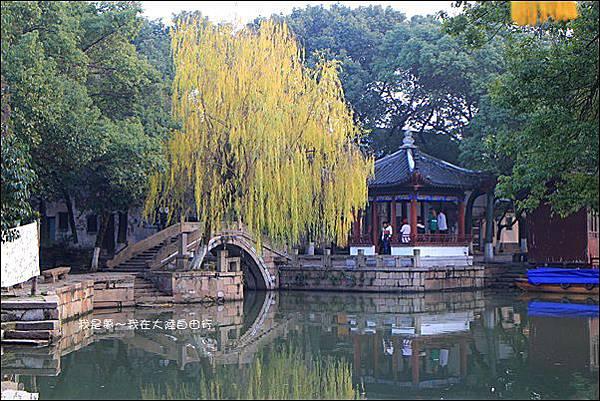 上海蘇杭黃山九天35.jpg