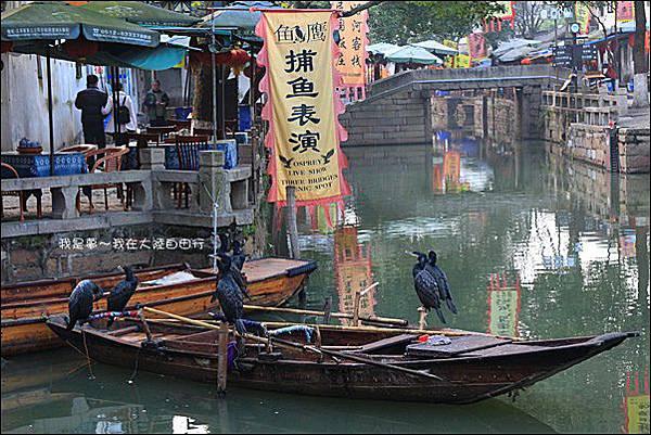 上海蘇杭黃山九天39.jpg