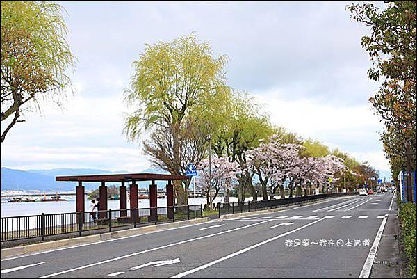 日本賞櫻5日遊01.jpg