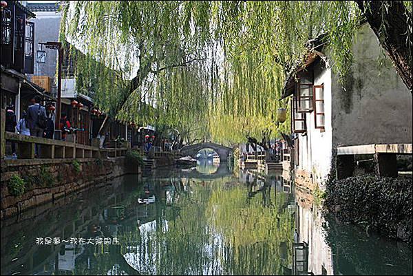 上海蘇杭黃山九天28.jpg