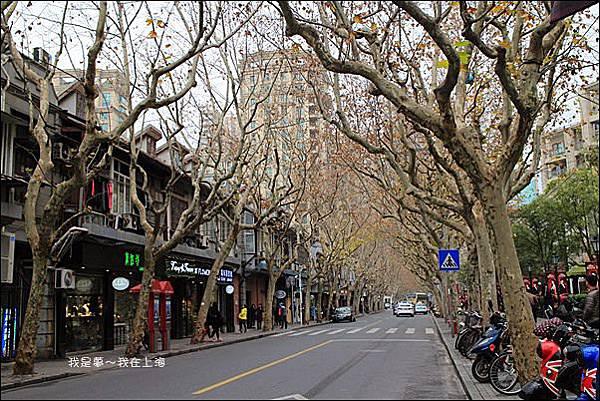 上海蘇杭黃山九天22.jpg