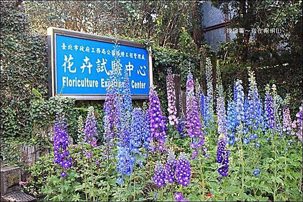 台北三天二夜09.jpg