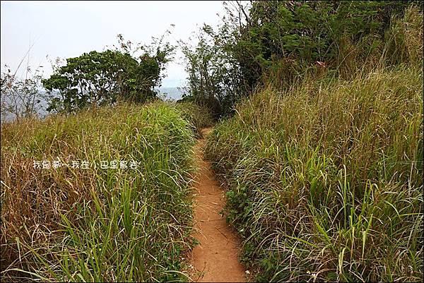 小巴里島岩16.jpg