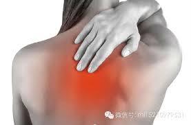 「筋骨筋膜是一切疼痛的根源」的圖片搜尋結果
